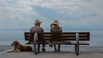 old couple sitting on a beach with their dog at their feet
