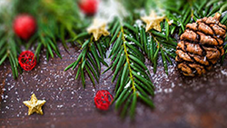 Pine cones and Christmas ornaments